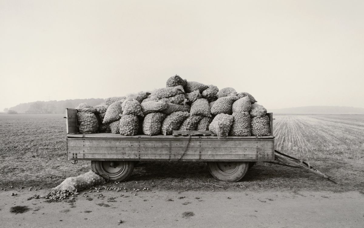 """Heinrich Riebesehl, Schillerslage (Hannover), Okt. 78, aus der Serie """"Agrarlandschaften"""", 1978, Silbergelatinepapier, Museum für Kunst und Gewerbe Hamburg, © VG Bild-Kunst, Bonn 2020"""